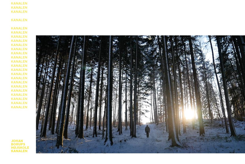 Meg og skogen Camilla Pavlikova Sandland